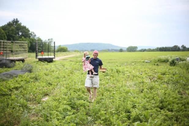 Picking strawberries. Taken by Ashley Weeks Cart. Click the image for the link.